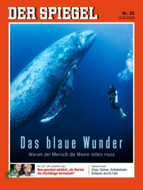 33/2016, Das blaue Wunder